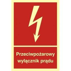 Przeciwpożarowy wyłącznik prądu. Płyta fluorestencyjna  20 x29,6 cm