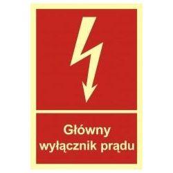CZAPKA OCIEPLANA Z ODBLASKOWĄ LAMÓWKĄ/ pomarańczowa/ B023